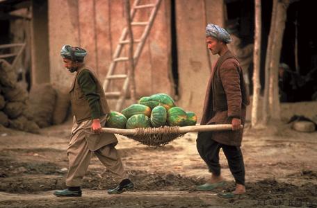 Melon growers