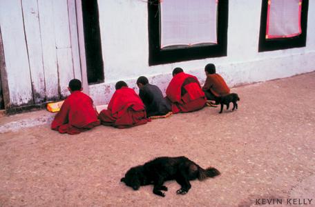 Students, Sikkim